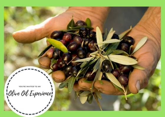 Olive Oil Experience